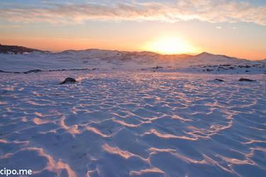 Sea of snow by mcipovic