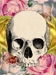 Floral Skull 2 by CalliopeWoods