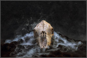 Skull n Smoke by Magicc-Imagery