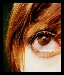 Eyes That... Sunlight by marylindsay