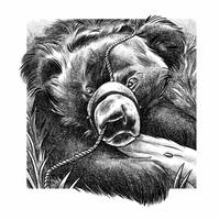 Dancing Bear by JustinWyatt