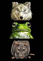 Animal Heads by JustinWyatt
