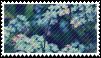blue flowers .F2U stamp. by ChainOfRain
