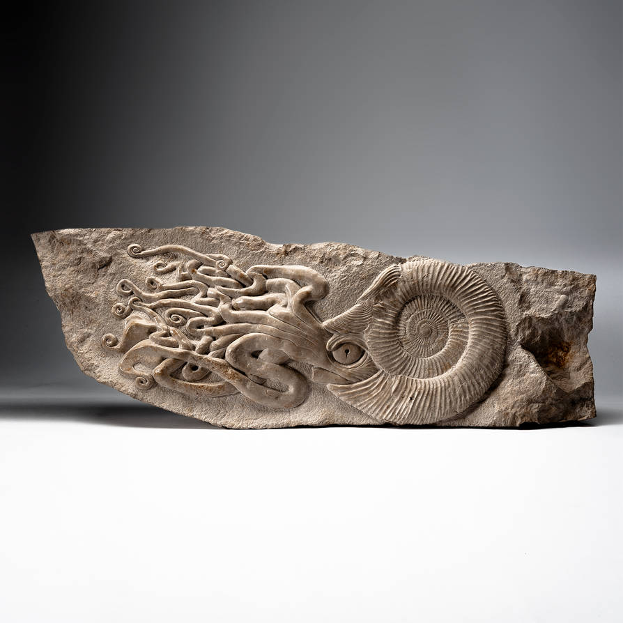 Ammonite + carving by WSi