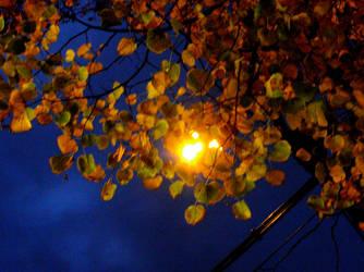 Blue Night by Batsceba