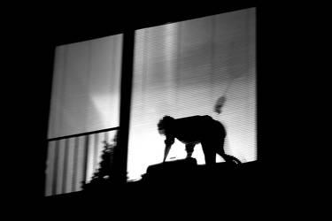 but a shadow in the night by Batsceba