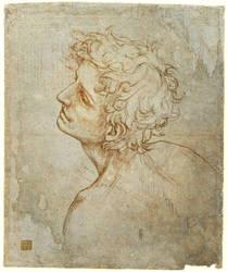 Fioravanti Folio: Master Copy by efelidi