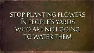 Stop Planting Flowers In People's Yards by AbbyShue
