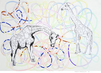 Giraffes 24 by renatadomagalska