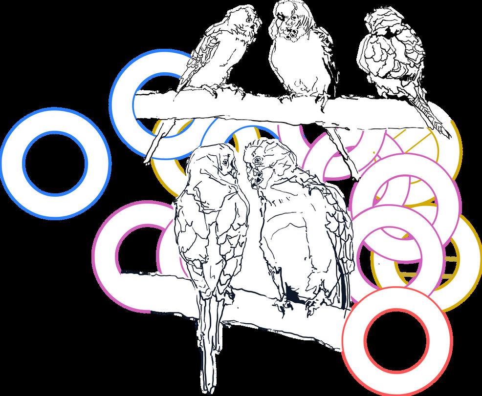 Budgies - vector version by renatadomagalska