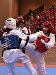Taekwondo U.S. Open 20 by Kicks02