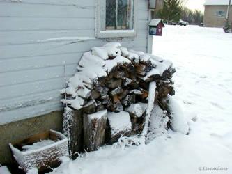 Thanksgiving 2004 - Wood Pile by Kicks02