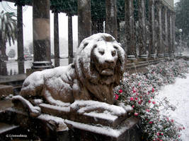 NOLA Snow - Peristyle 2 by Kicks02