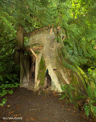 Guiellmot Cove - Stump House by Kicks02