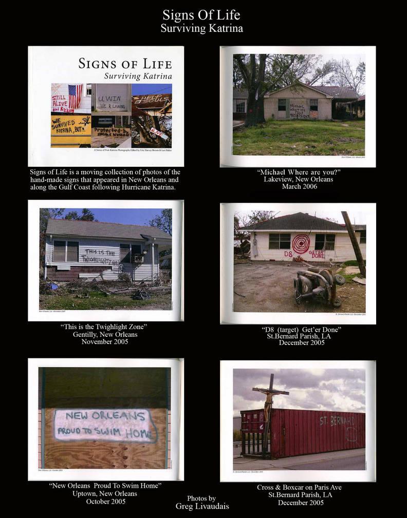 Signs of Life Surviving Katrina by Kicks02