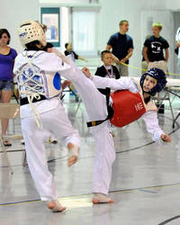 Shannon Taekwondo Gold Spar by Kicks02