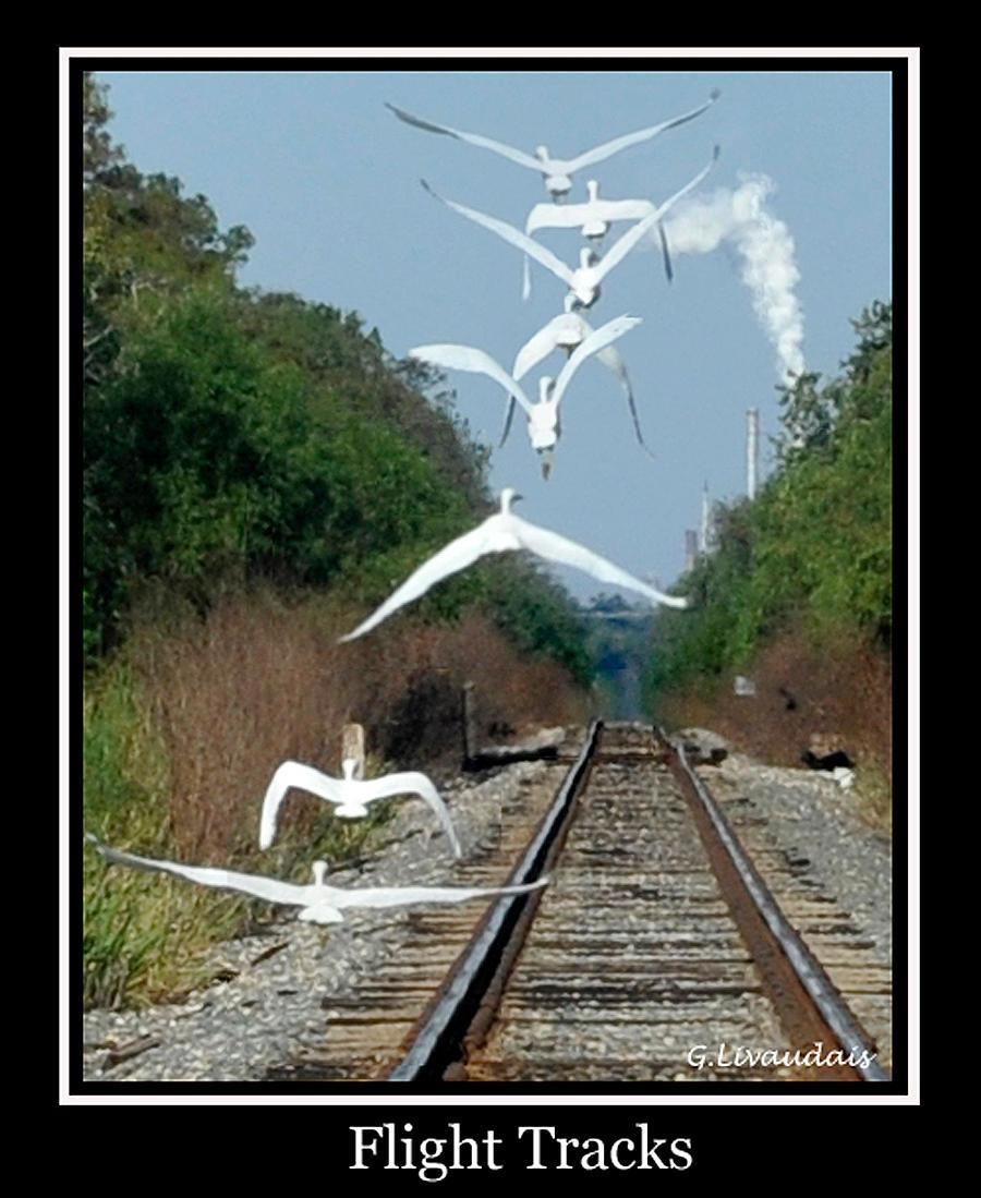 Flight Tracks by Kicks02