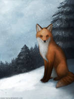 Snowy Fox by Meep--Merp