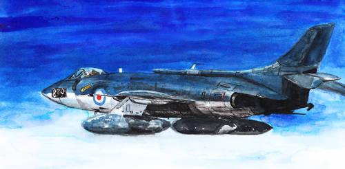 Supermarine Scimitar by hallovey