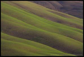 Green Wave by Demonrat