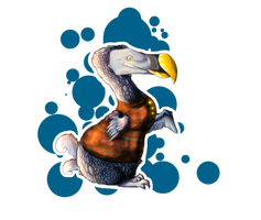 Dodo bird - Profile by That-Dodo