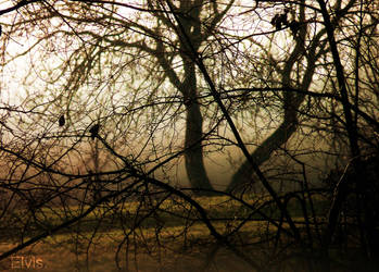 Autumn. by YellowAutumnLeaves