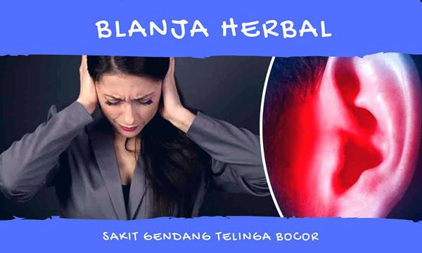 Obat Gendang Telinga Bocor Dan Bernanah