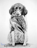 Commissioned dog portrait by LeontinevanVliet