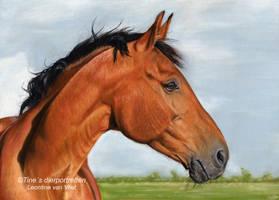 Equine elegance, pastel drawing by LeontinevanVliet