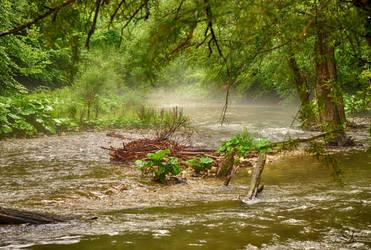 flood by Lk-Photography