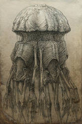 Medusa by Skirill