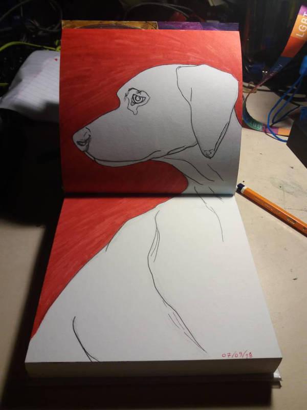 White dog red - Sketchbook upload  by Deep6Howl