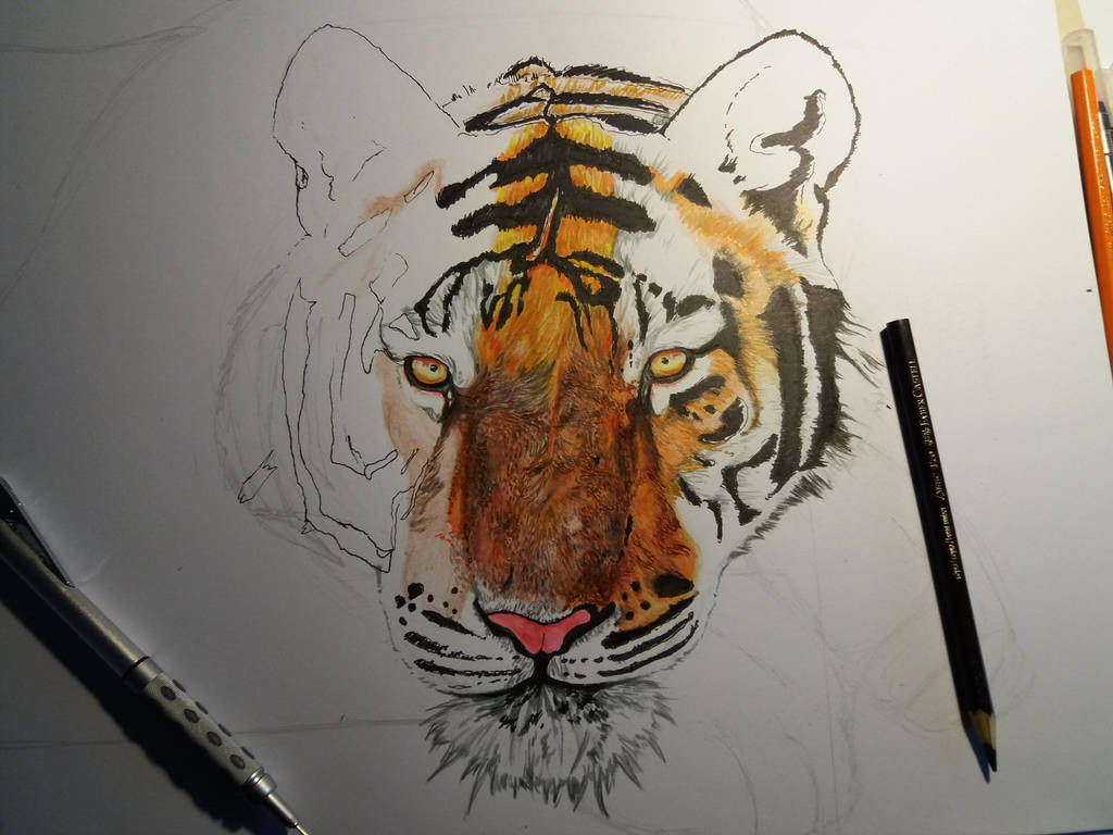Tiger process - VIP by Deep6Howl