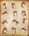 Foxes - again by Culpeo-Fox