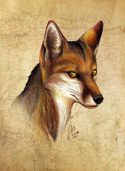 Alter Ego by Culpeo-Fox
