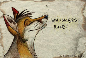 Whiskers by Culpeo-Fox