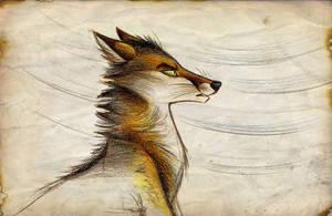 Sindy Weather by Culpeo-Fox