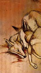 A warm place by Culpeo-Fox