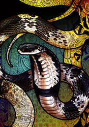 Indo-Chinese Spitting Cobra by Culpeo-Fox