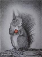My nut by Indigoblau