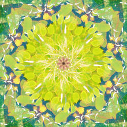 Leaf Pile Mandala by Dr-Pen