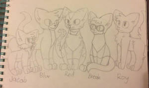 Some cats by the-odd-cat