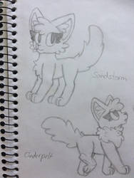 Sandstorm and Cinderpelt by the-odd-cat
