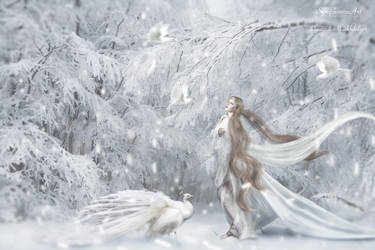 Dream of winterland by SymphonicArt