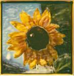 Leos Sunflower 1 by PolaroidVanGogh