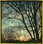 Cold Winter Sunset by PolaroidVanGogh