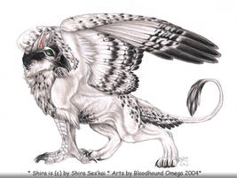 Shira as a Gryphon by BloodhoundOmega