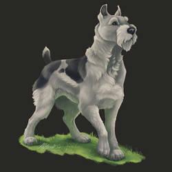The Dark Eye - Winnhaller Wolfsjaeger by BloodhoundOmega