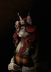 Vorndess' Steampunk Portrait by BloodhoundOmega