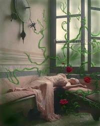 'sleeping beauty'3 by matchstickgirl